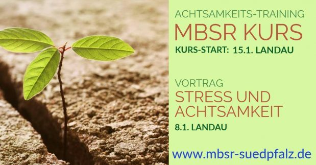 MBSR Kurs+Vortrag Januar 2019 Landau